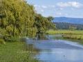 Mullendeere Creek